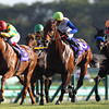 Champion sprinter Lord Kanaloa ran down pacesetter Hakusan Moon for a repeat victory in the Sprinters Stakes (Jpn-I), the first top-level race of Japan's fall season, Sept. 29 at Nakayama.<br /> Masakazu Takahashi Photo