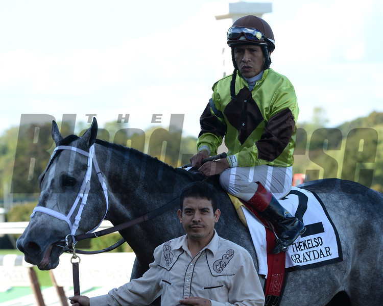 Graydar wins the Grade II Kelso Stakes  at Belmont Park, New York, 9/28/13....Ridden by Edgar Prado....<br /> Coglianese Photos