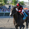 Cigar Street wins the 2013 Skip Away.<br /> Coglianese Photos
