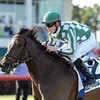 Centre Court wins the 2013 Honey Fox.<br /> Coglianese Photos/Kenny Martin