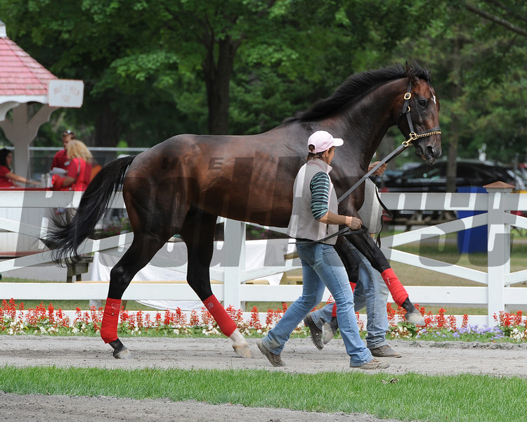 Fort Larned - Saratoga, July 26, 2013.<br /> Coglianese Photos