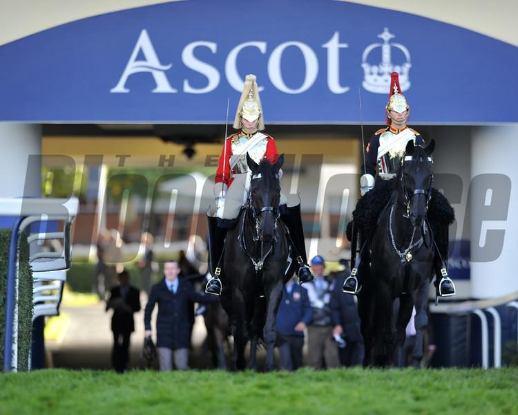 British Champions Day, Ascot Racecourse, England, 10/19/13, photo by Mathea Kelley