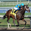 Live Lively wins the 2013 Davona Dale.<br /> Coglianese Photos/Courtney Heeney
