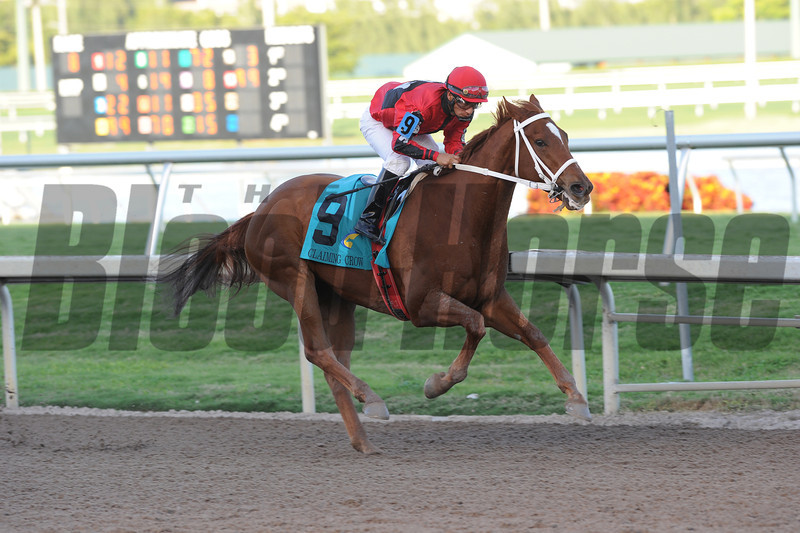 Point Finish wins the 2013 Claiming Crown Iron Horse.<br /> Coglianese Photos