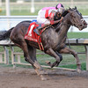 Orb wins the 2013 Fountain of Youth.<br /> Coglianese Photos/Courtney Heeney