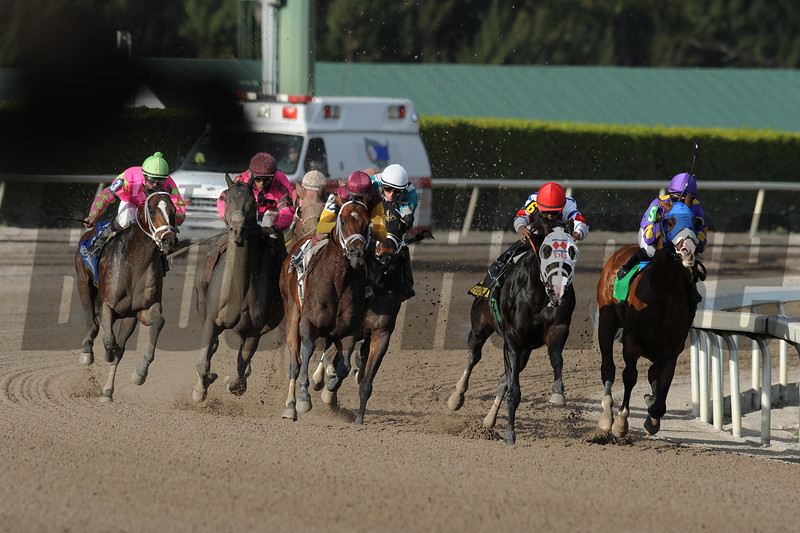 Fort Loudon wins the 2013 Gulfstream Park Sprint Championship.<br /> Coglianese Photos/Eleanor Gustafson