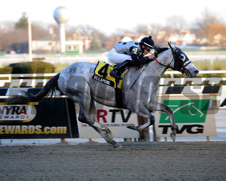 Ullapool wins the 2013 Garland of Roses.<br /> Coglianese Photos/Chelsea Durand
