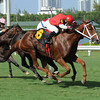 Millennia wins the 2013 TaWee Stakes.<br /> Coglianese Photos/Leslie Martin