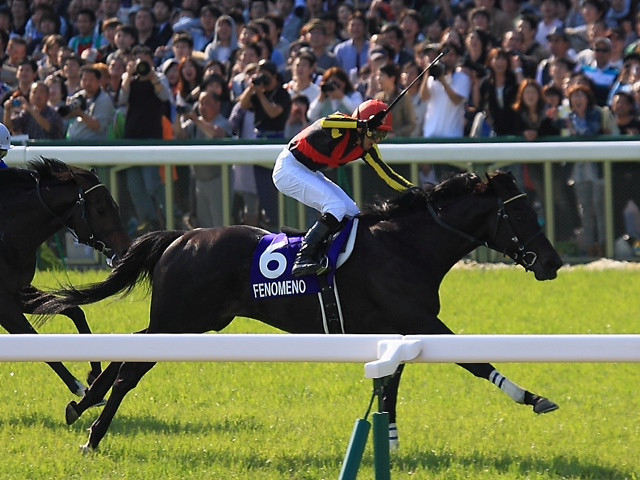 Fenomeno wins the Tenno Sho in Japan.<br /> ©Photo by Naoji Inada