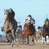 Goodtimehadbyall wins the 2013 Rapid Transit.<br /> Coglianese Photos