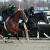 Honor Code works 11/24/2013 <br /> Coglianese Photos/Susie Raisher