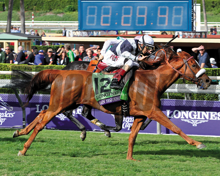 Main Sequence Breeders' Cup Turf Chad B. Harmon