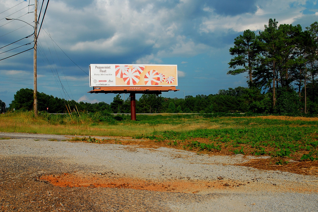 Athens, GA (Clarke County) July 2009