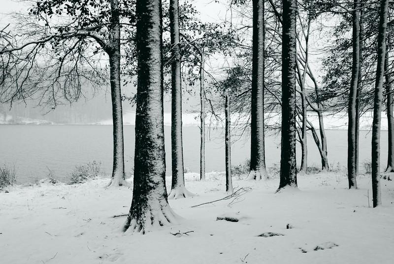 Sandy Creek Park, GA (Clarke County) December 2010