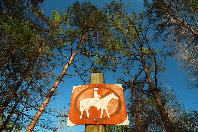 Sandy Creek Park, GA (Clarke County) November 2009