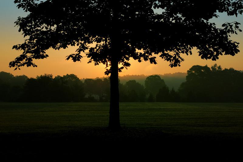 Sandy Creek Park, GA (Clarke County) May 2010