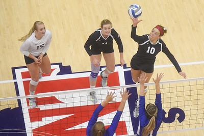 Belmont volleyball hosts UT Arlington