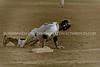 Chap Baseball vs Dakota Ridge-4375