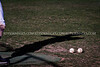 Chap Baseball vs Dakota Ridge-4387