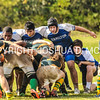 Ham Rugby Oct 25 2014-1412