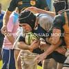 Ham Rugby Oct 25 2014-1447