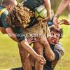 Ham Rugby Oct 25 2014-1723