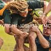 Ham Rugby Oct 25 2014-1724