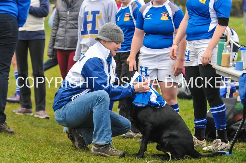 Ham Rugby Oct 25 2014-34
