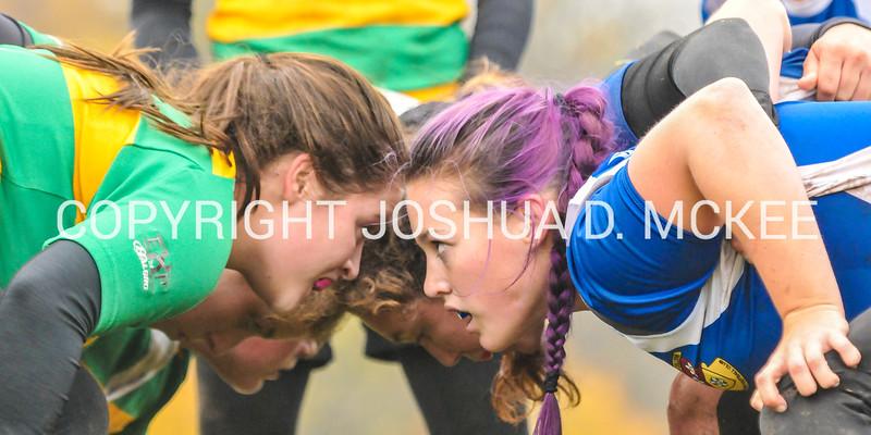 Ham Rugby Oct 25 2014-346