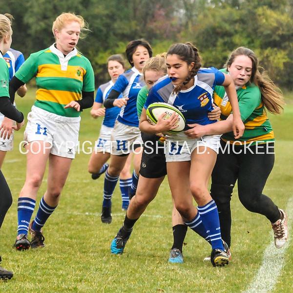 Ham Rugby Oct 25 2014-309