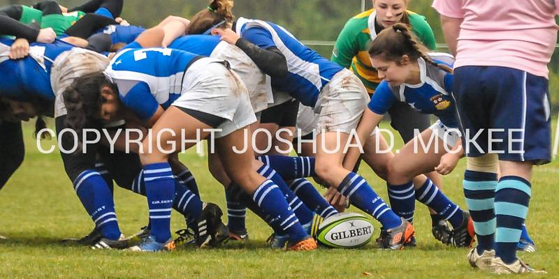 Ham Rugby Oct 25 2014-54