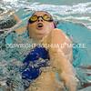 Ham Swim Dive Invit 12-5-15-250