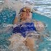 Ham Swim Dive Invit 12-5-15-1318