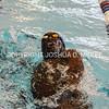 Ham Swim Dive Invit 12-5-15-1789