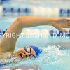 SwimDive v Skidmore 1-20-16-0257
