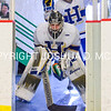 3/5/17 2:49:06 PM NESCAC MEN'S HOCKEY FINAL Hamilton College v Trinity College at Russell Sage Rink, Hamilton College, Clinton, NY<br /> <br /> Trinity won 3-2 in OT<br /> <br /> Photo by Josh McKee