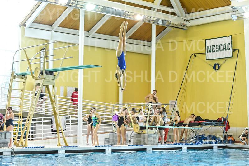 12/1/18 10:54:42 AM Swimming and Diving:  Hamilton College Invitational at Bristol Pool, Hamilton College, Clinton, NY <br /> <br /> Photo by Josh McKee