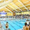 12/1/18 10:51:47 AM Swimming and Diving:  Hamilton College Invitational at Bristol Pool, Hamilton College, Clinton, NY <br /> <br /> Photo by Josh McKee