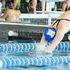 12/1/18 11:39:56 AM Swimming and Diving:  Hamilton College Invitational at Bristol Pool, Hamilton College, Clinton, NY <br /> <br /> Photo by Josh McKee