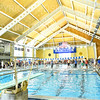 12/1/18 10:51:01 AM Swimming and Diving:  Hamilton College Invitational at Bristol Pool, Hamilton College, Clinton, NY <br /> <br /> Photo by Josh McKee