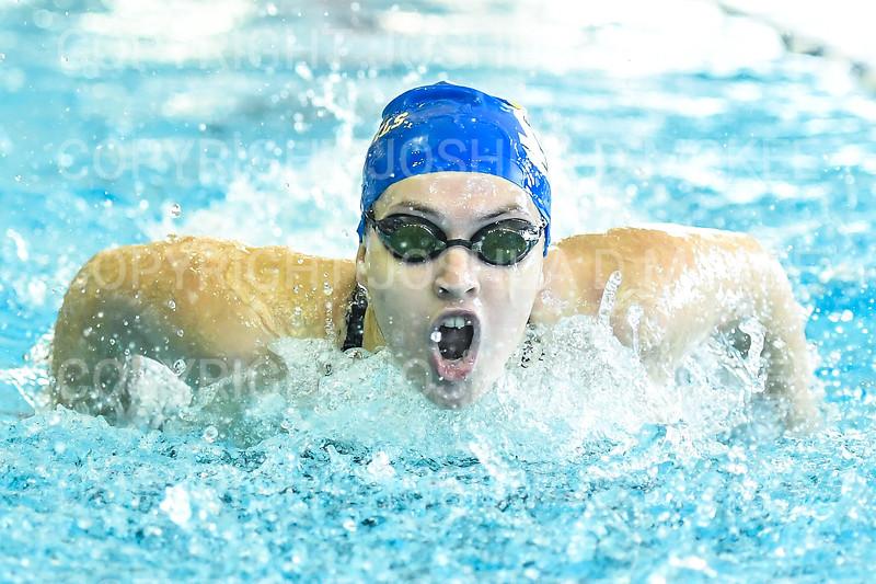 12/1/18 11:26:04 AM Swimming and Diving:  Hamilton College Invitational at Bristol Pool, Hamilton College, Clinton, NY <br /> <br /> Photo by Josh McKee