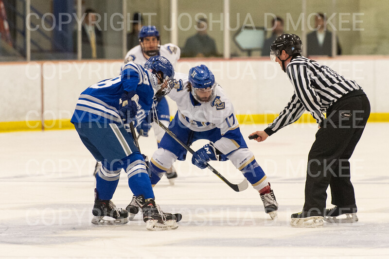 Hamilton College forward Andrew Court (17)<br /> <br /> 1/4/19 7:12:13 PM Men's Hockey:  Colby College v Hamilton College at Russell Sage Rink, Hamilton College, Clinton, NY<br /> <br /> Final:  Colby 2   Hamilton 4<br /> <br /> Photo by Josh McKee