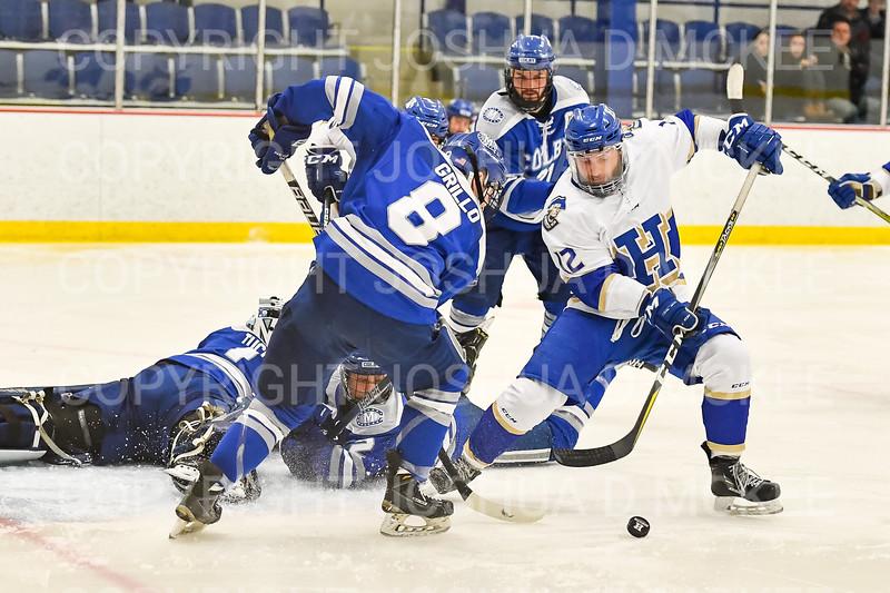 Hamilton College forward Nick Ursitti (12)<br /> <br /> 1/4/19 7:51:08 PM Men's Hockey:  Colby College v Hamilton College at Russell Sage Rink, Hamilton College, Clinton, NY<br /> <br /> Final:  Colby 2   Hamilton 4<br /> <br /> Photo by Josh McKee