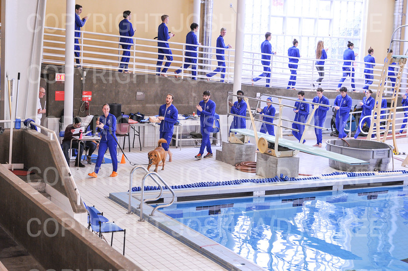 11/17/18 12:56:38 PM Swimming and Diving:  SUNY New Paltz vs Hamilton College at Bristol Pool, Hamilton College, Clinton, NY <br /> <br /> Photo by Josh McKee