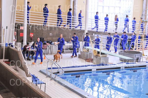 11/17/18 12:56:38 PM Swimming and Diving:  SUNY New Paltz vs Hamilton College at Bristol Pool, Hamilton College, Clinton, NY <br /> <br /> Photo by Josh McKee