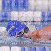 11/17/18 1:28:32 PM Swimming and Diving:  SUNY New Paltz vs Hamilton College at Bristol Pool, Hamilton College, Clinton, NY <br /> <br /> Photo by Josh McKee
