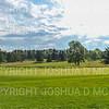 9/10/19 4:19:07 PM Hamilton College Men's and Women's Golf at the Bob Simon Golf Center, Hamilton College, Clinton, NY<br /> <br /> Photo by Josh McKee