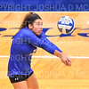Hamilton College S/DS Sophia Bernstein (3)<br /> <br /> 9/20/19 6:56:26 PM Women's Volleyball:  Cazenovia College vs Hamilton College, at Margaret Bundy Scott Field House, Hamilton College, Clinton, NY<br /> <br /> Final: Cazenovia 0   Hamilton 3<br /> <br /> Photo by Josh McKee