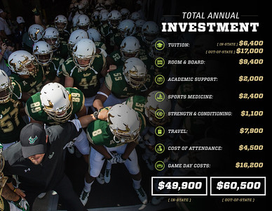 Total Annual Investment