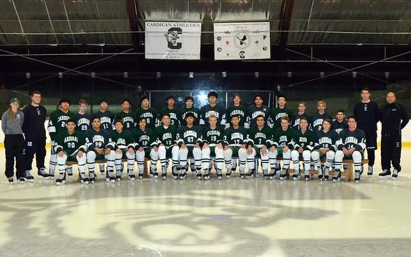Reserve Hockey 2016